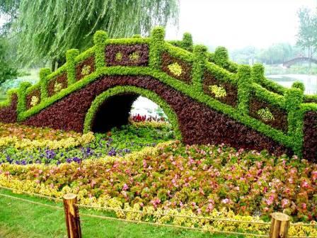 Čarobni vrt Vrt%20(7)